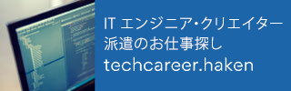 techcareer haken